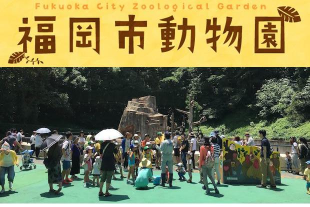 【参加者募集中】7/31(日) ZOOパパとゆく「親子de動物園ピクニック」